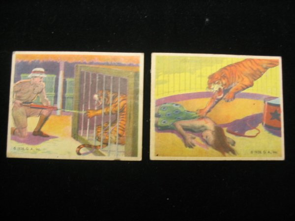 4005: (2) 1938 Tiger Cards by G.A., Frank Buck