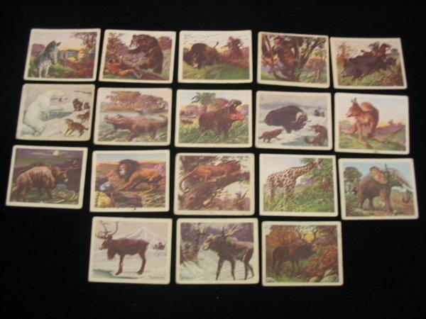 4007: 1933 Big Game Peanut Block Cards