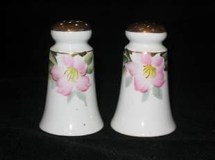 Noritake Azalea Salt & Pepper Shakers, Tapered Be