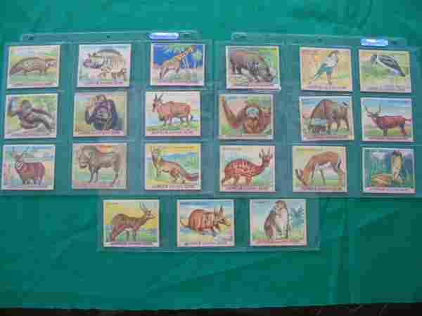 Jungle Chewing Gum 1930's Partial Set of 21 Cards