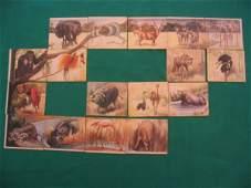51: National Licorice Company African Jungle Scene Card