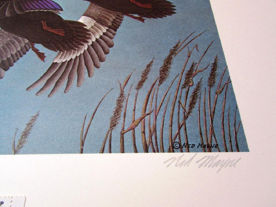 US DE 1980 DUCK PRINT STAMP & FOLIO NED MAYNE 1038 - 4