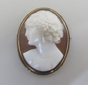 Antique Carved Shell Cameo 14k Gold Pin Brooch
