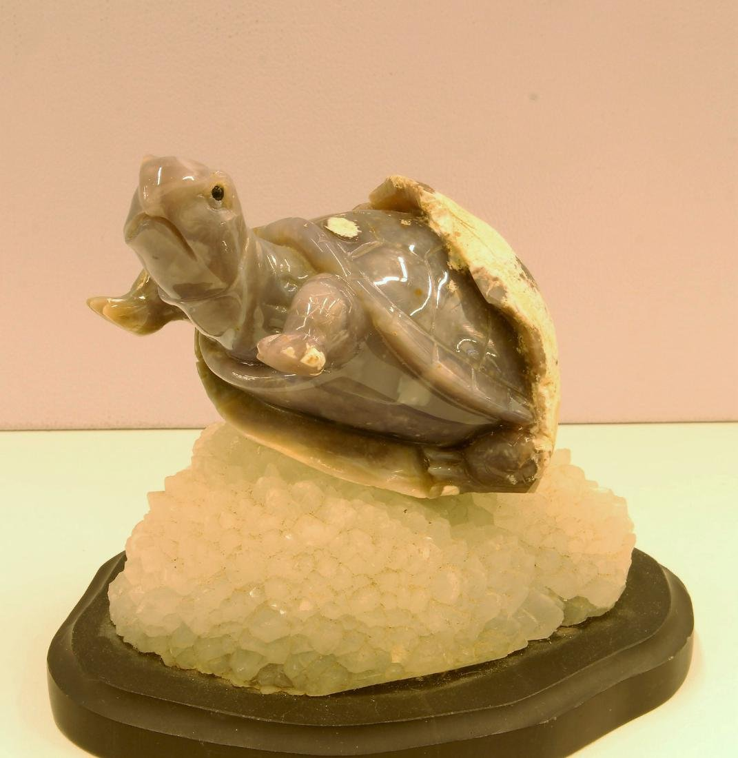 Agate Turtle Craving