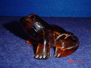 Amber glass frog