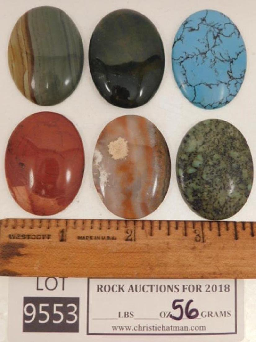 ASSORTED CABOCHONS ROCK STONE LAPIDARY SPECIMEN (Yes,