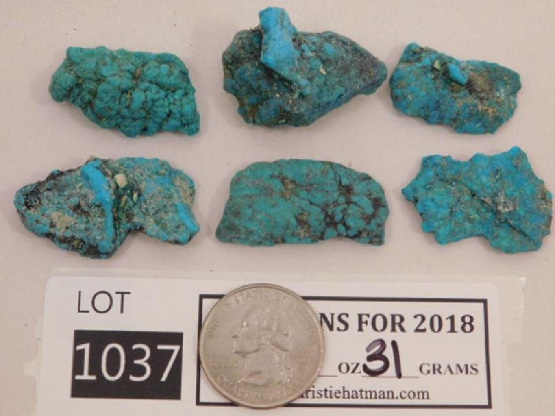 ROUGH TURQUOISE ROCK STONE LAPIDARY SPECIMEN (Yes, We
