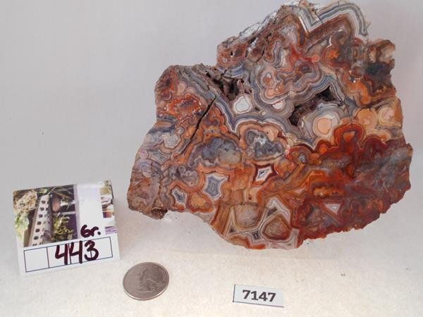 MEXICAL LACE AGATE ROCK STONE LAPIDARY
