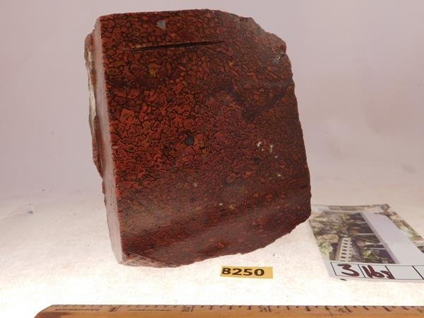DINOSAUR FOSSIL RED AGATIZED FOSSILIZED BONE ROCK STONE