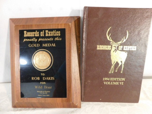 RECORD BOOK RUSSIAN BLACK BOAR MOUNT TAXIDERMY GAME PIG - 7