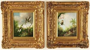 PR. OF SIGNED O/C PAINTINGS OF EXOTIC BIRDS