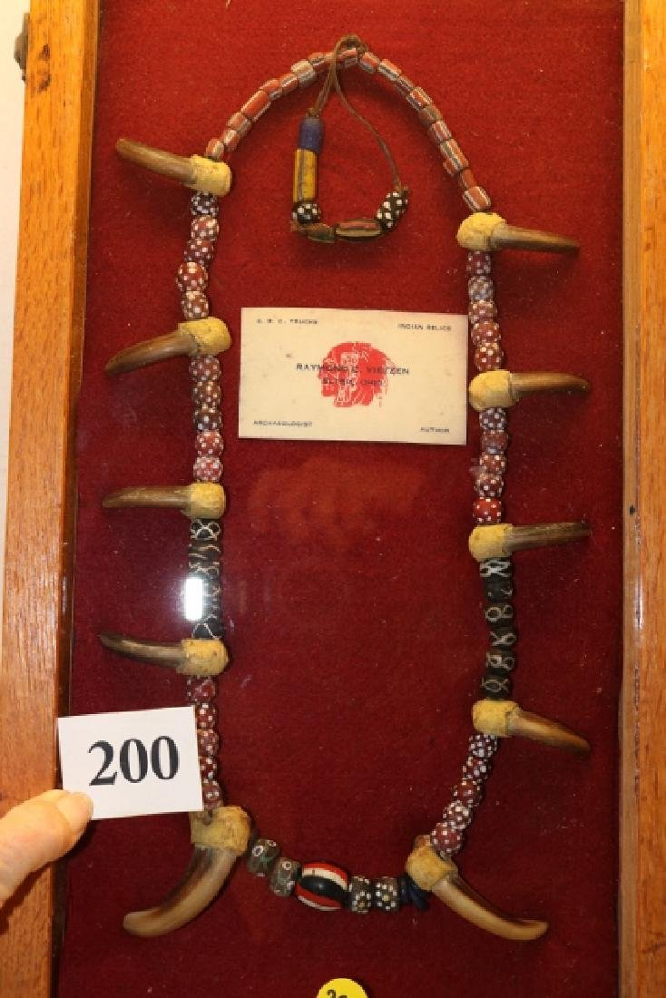 bear claw necklace - WILL NOT SHIP OUT OF COUNTRY