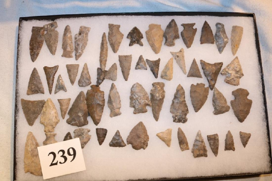 Frame with 53 Flint Triangular Points