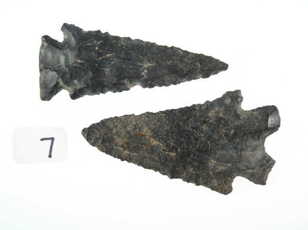 7: Pair Of Coshocton Points