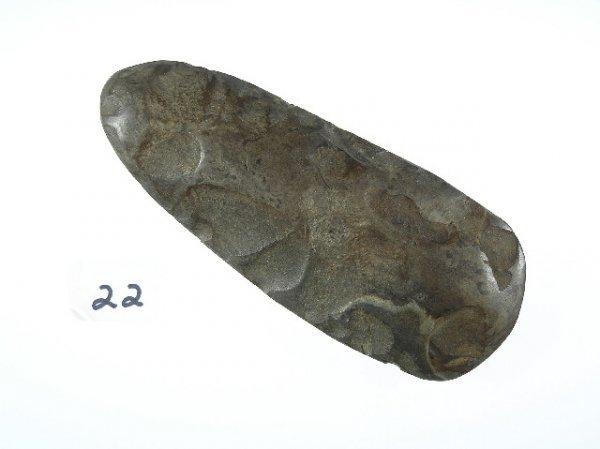 22: Highly Polished Flint Celt