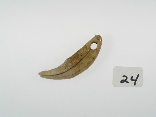 24: Drilled Tooth