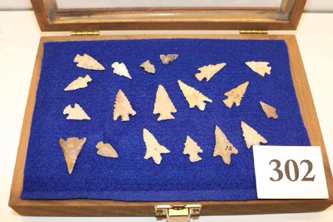 Frame of (19) Midwest Stemmed Bird Points