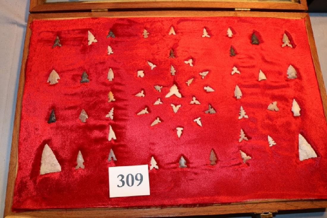 Frame of (55) Western Bird Points