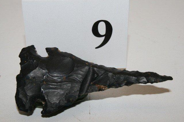 9: Black Meadowood Drill