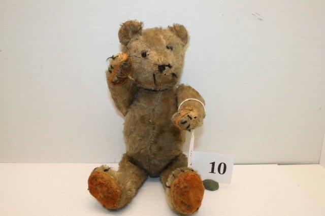 """10: 12"""" Early Bear"""