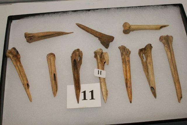 10 Turkey Bone Awl