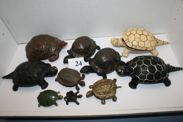 Collection of 10 Turtles