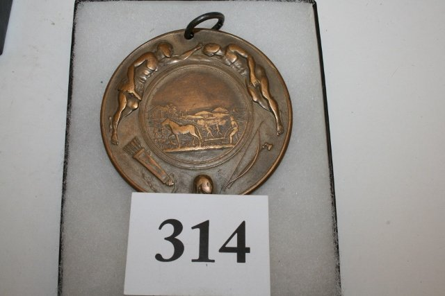Bronze Lincoln 1862 Peace Medal - 3