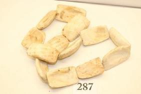 13 Shell Celts, Florida Coast