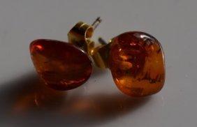Pair of Amber Earrings