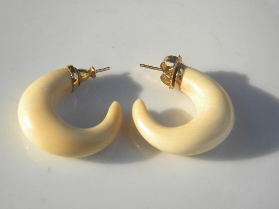Pair of Earrings - 2
