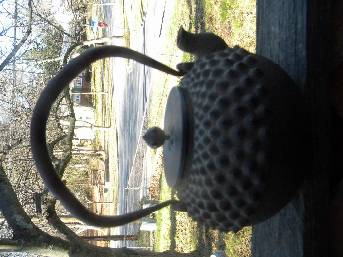 Antique Japanese Iron Teapot 18th C. - 2