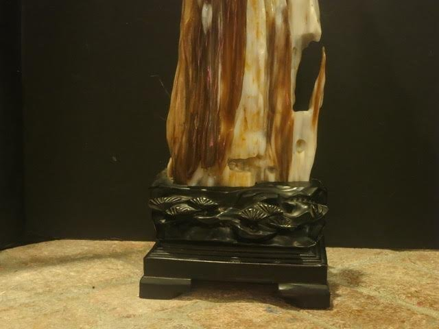 Petrified wood with carved rosewood base - 2