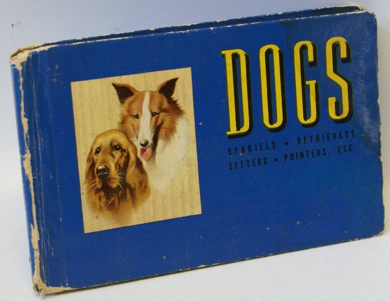 Vintage 1941 THE BLUE BOOK OF DOGS, by Robert Briggs