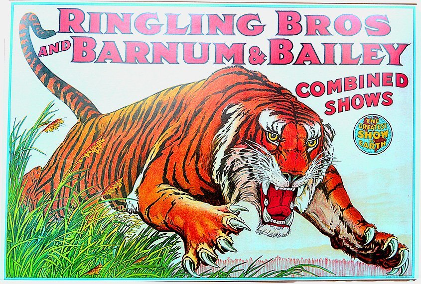 Ringling Bros and Barnum & Bailey Circus Poster