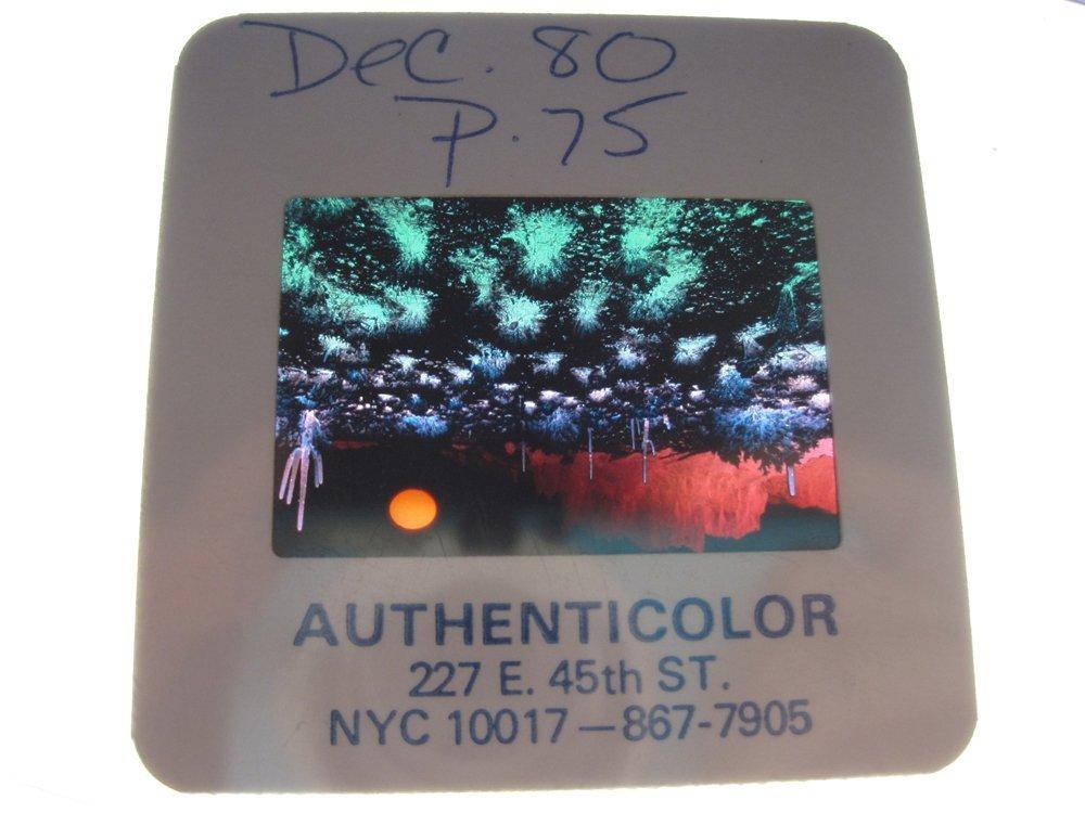 Original OMNI 35mm Slide - Dec '81, Page 75