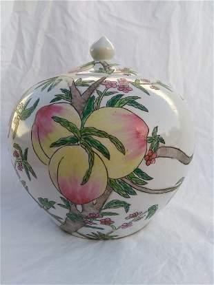 Chinese Porcelain Famille Jar