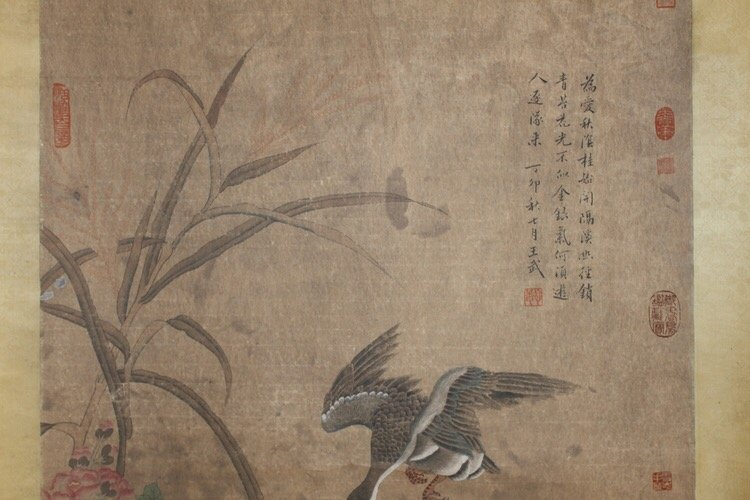 Chinese Painting Flower and Bird Scroll - 6