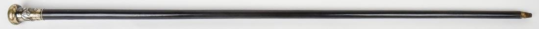 Chinese Silver Knobbed Cane