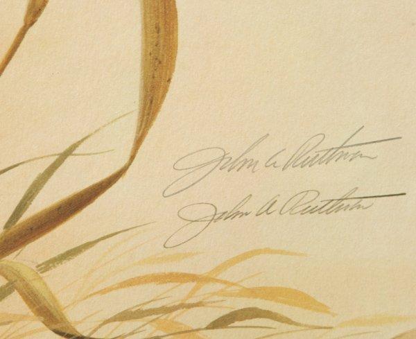 "John A. Ruthven (Ohio) Print ""Bengal Tiger"" - 3"