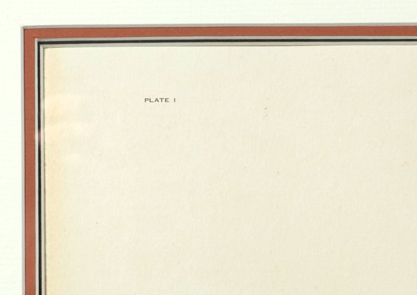 "John A. Ruthven (Ohio) Print ""Bengal Tiger"" - 6"