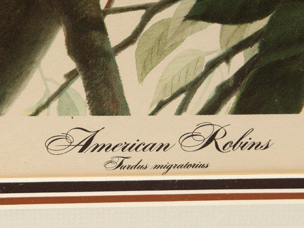 "John A. Ruthven (Ohio) Print ""American Robins"" - 4"