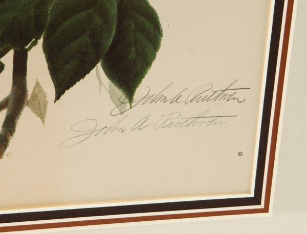 "John A. Ruthven (Ohio) Print ""American Robins"" - 5"