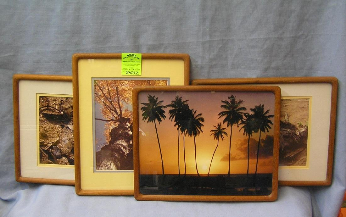 Group of four matted and framed prints