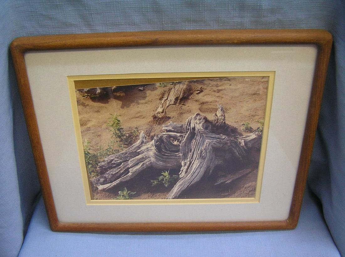 Group of four matted and framed prints - 4