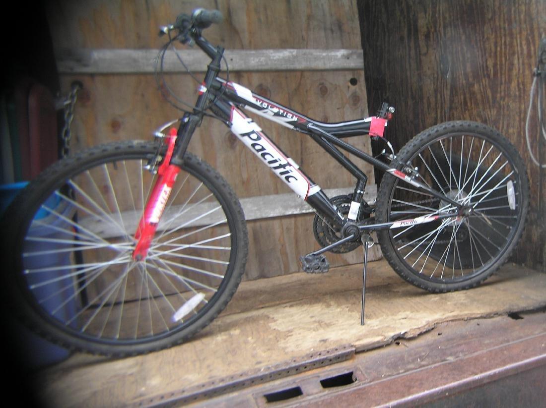 Pacific Evolution mountain bike