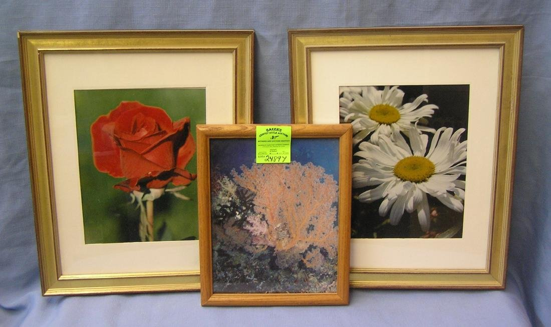 Group of three matted and framed prints