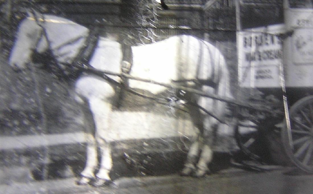 Borden Milk horse drawn wagon glass slide - 2