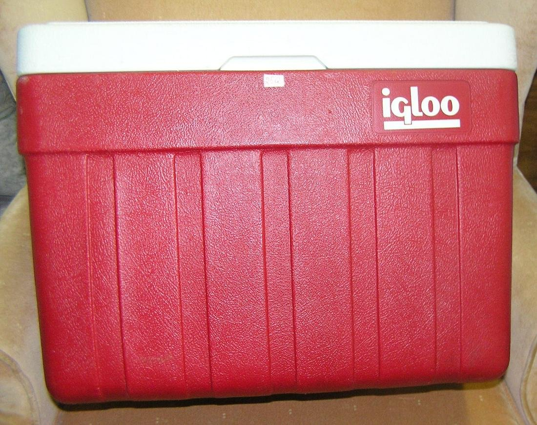Igloo beach, barbeque or camping cooler