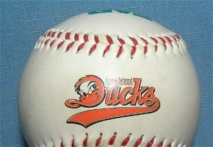 Long Island Ducks baseball team baseball