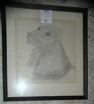 Dog pencil drawing artist signed dated 1972